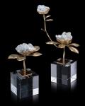 Celestite Blooms
